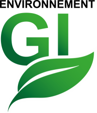Environnement GI